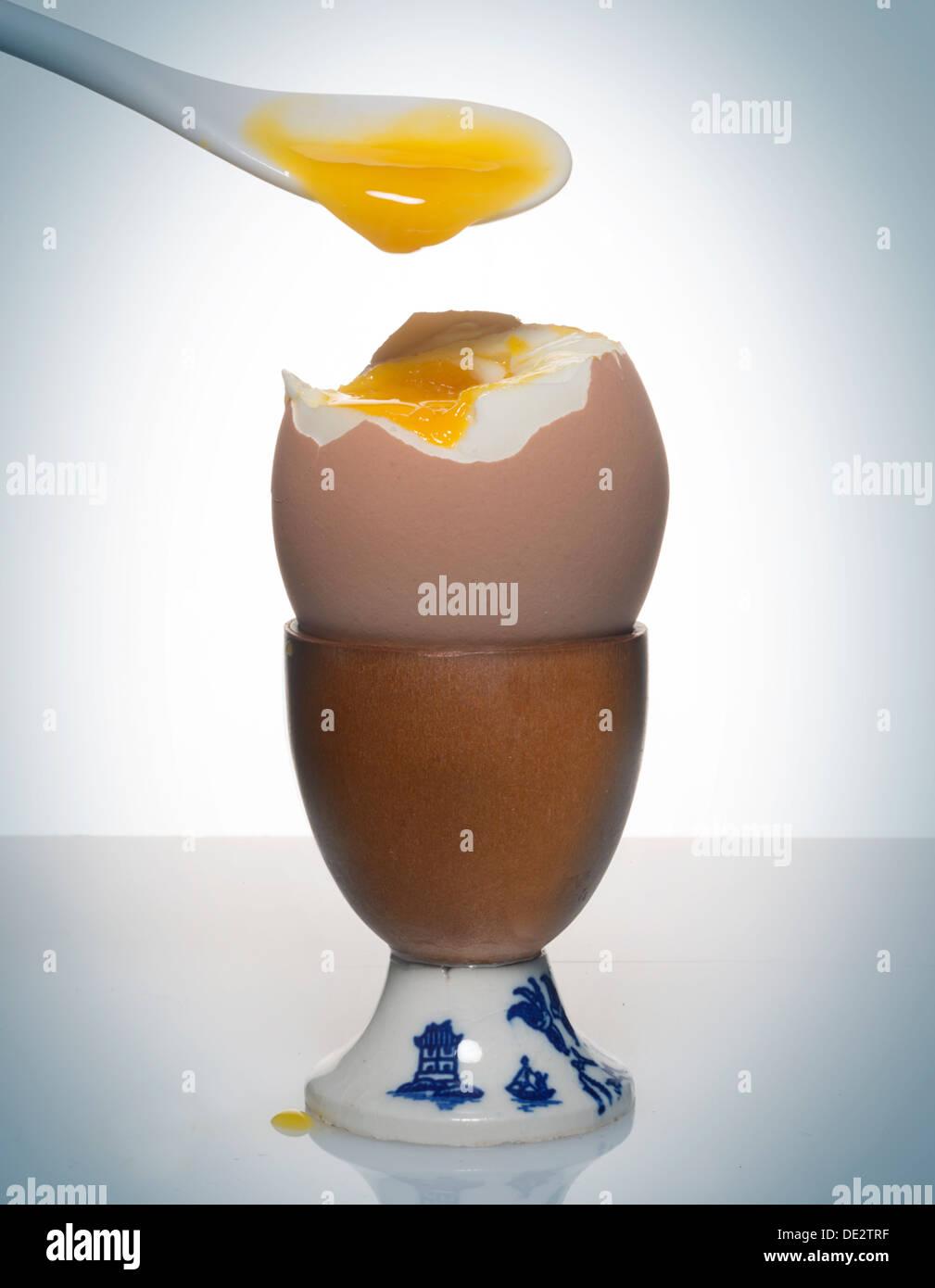 supporto di tazza di uovo Immagini Stock