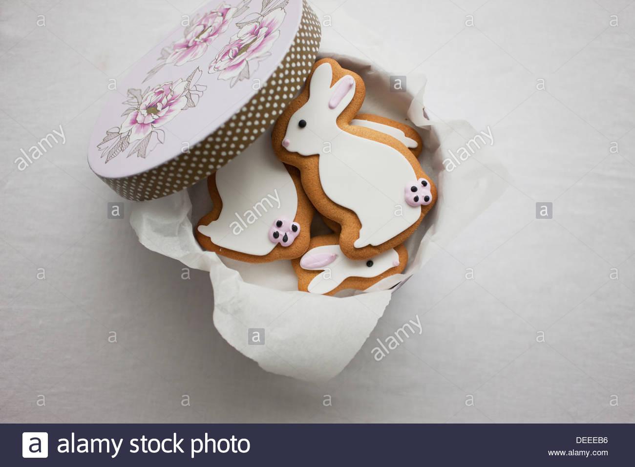 Coniglietto di pasqua i cookie in scatola rotonda Immagini Stock