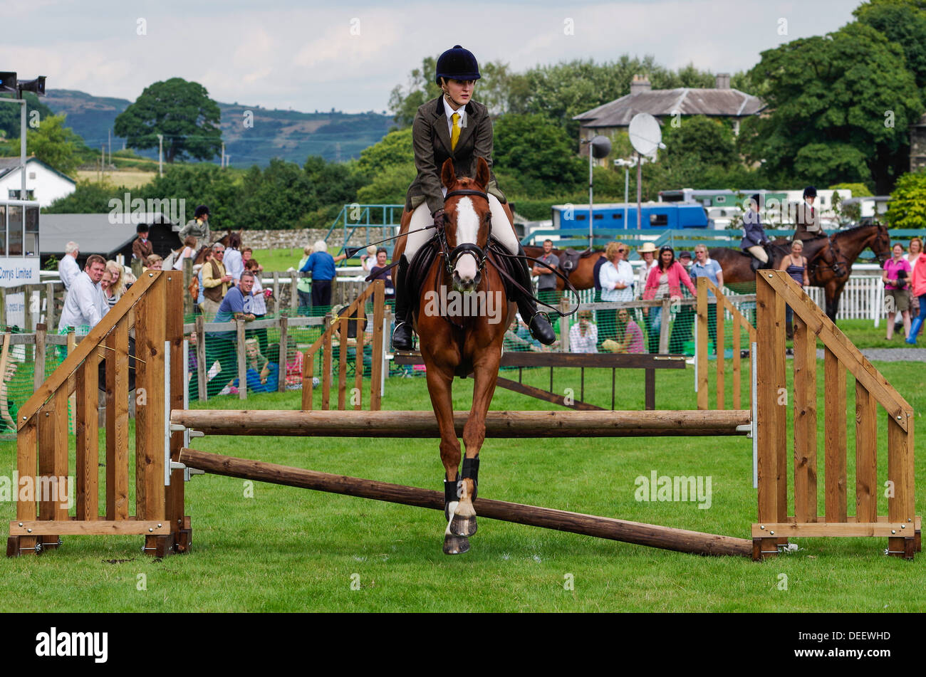 Show Jumping a Cartmel Show 2013 Immagini Stock