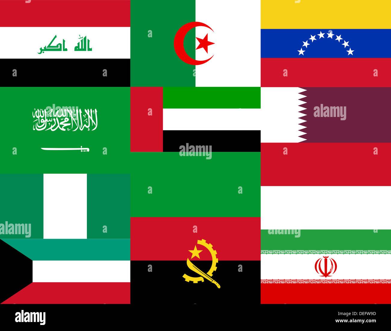 Bandiere nazionali dei paesi dell'OPEC Immagini Stock