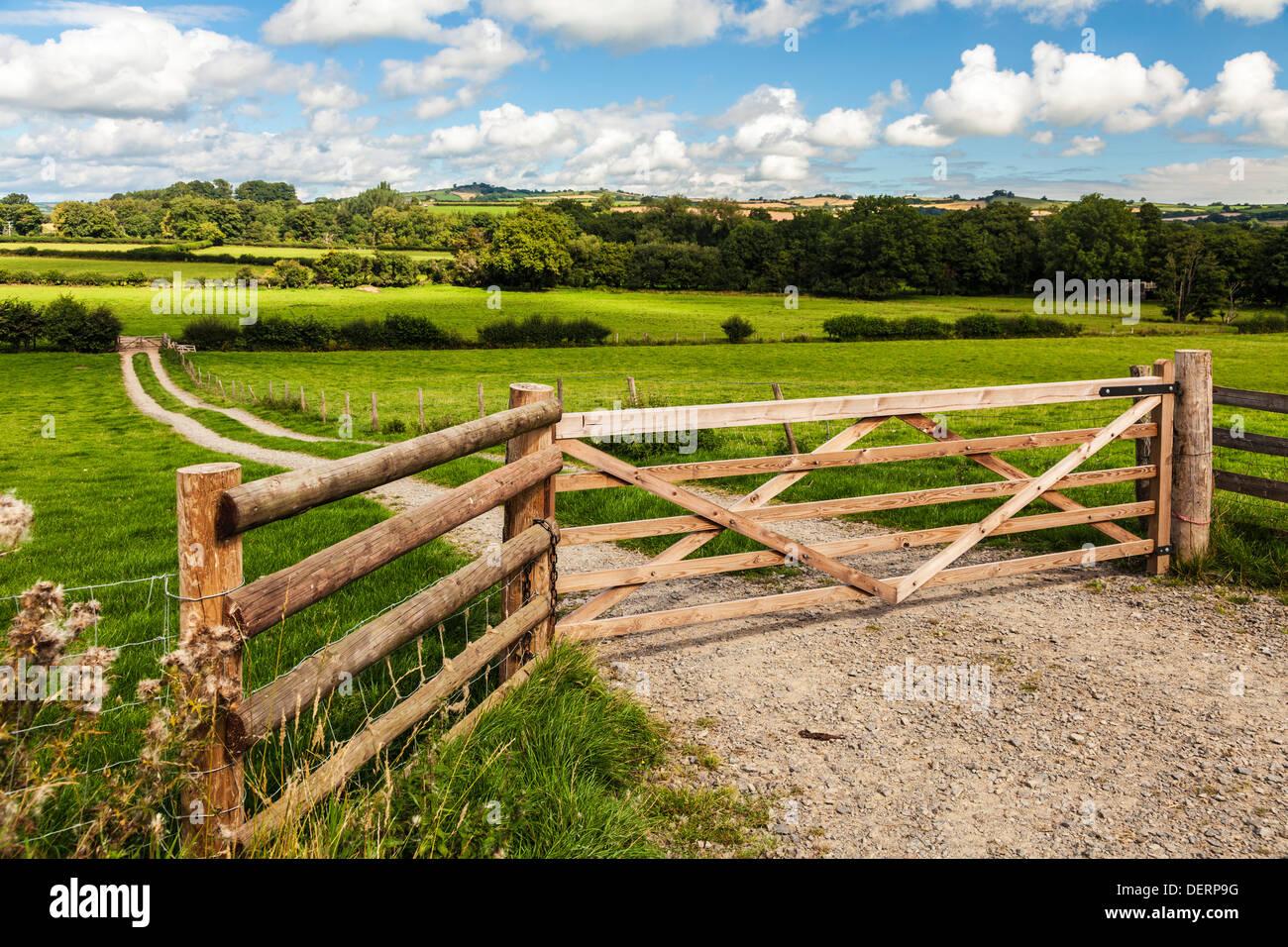 La laminazione campagna gallese nel Parco Nazionale di Brecon Beacons vicino Pencelli. Immagini Stock