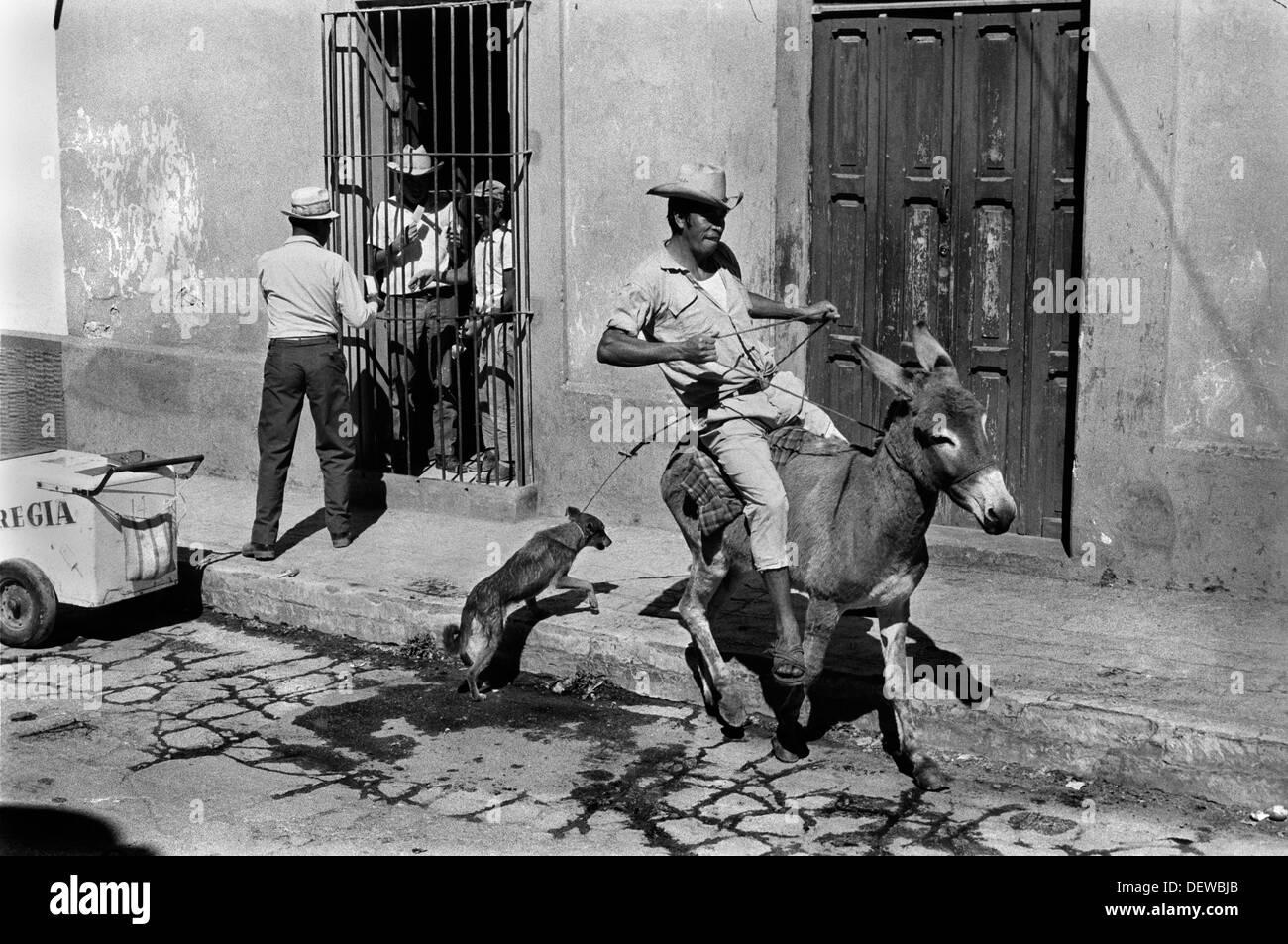 Messico, runaway asino, e l uomo la vendita di gelati. San Cristóbal de las Casas, Chiapas degli anni settanta HOMER SYKES Immagini Stock