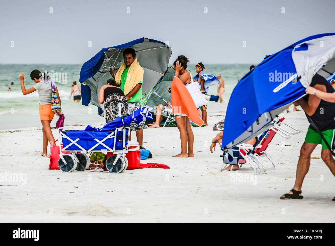 Persone che cercano di goccia ombrelloni durante una tempesta di vento sulla Siesta Key beach florida Immagini Stock