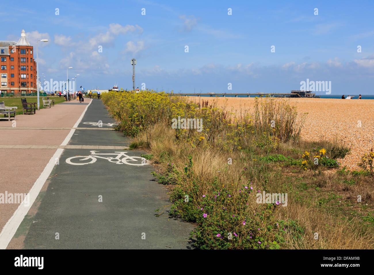 Ciclo nazionale di instradamento di rete 1 con il segno sul lungomare da Walmer beach a Deal, Kent, Inghilterra, Regno Unito, Gran Bretagna Immagini Stock