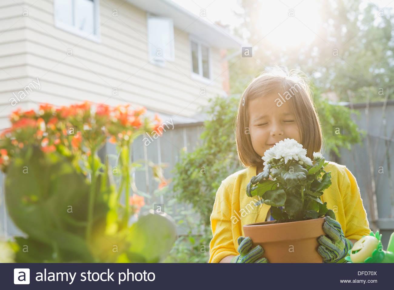 Ragazza carina profumati fiori Immagini Stock