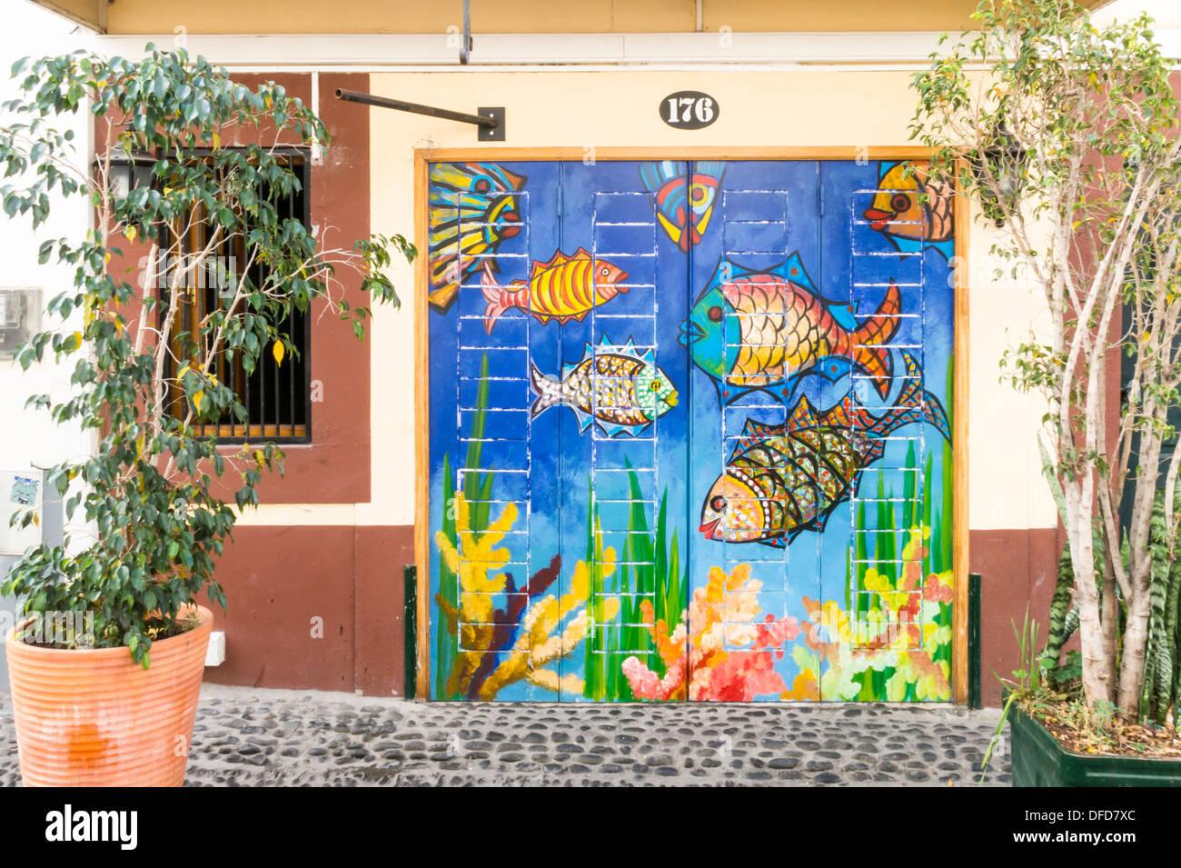 Porte verniciate in Rua de Santa Maria Funchal Madeira Immagini Stock