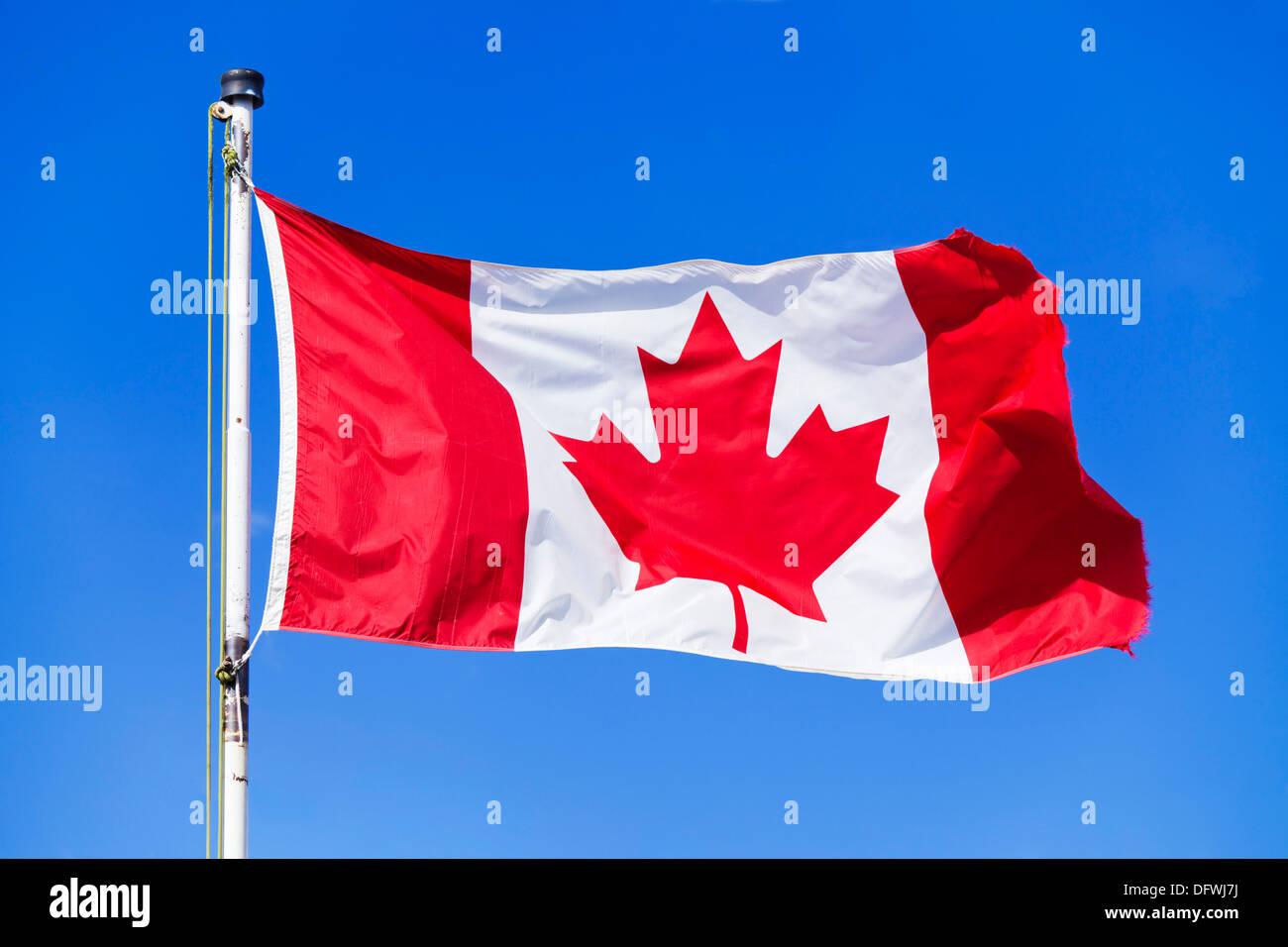 Bandiera canadese su un pennone contro un cielo blu sullo sfondo non nuvole montagne rocciose canadesi in Canada Immagini Stock
