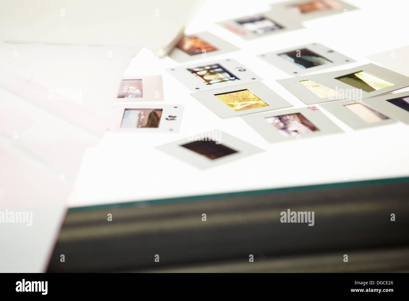 Diapositive su lightbox Immagini Stock
