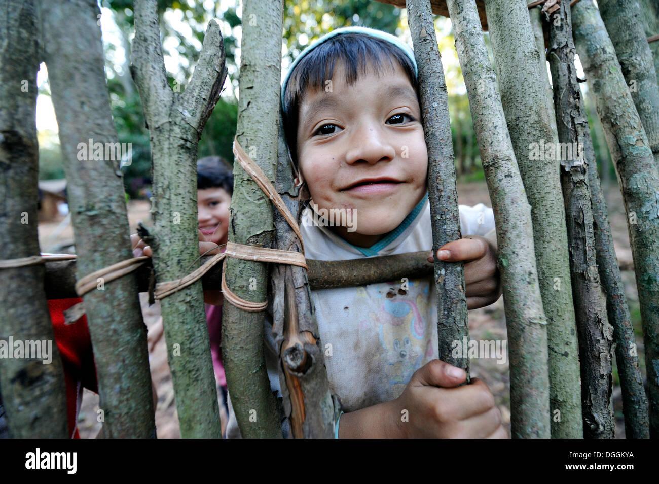Cheeky boy, 6, guardando attraverso uno spazio in un recinto, in comunità di Mbya-Guarani indiani, Campito, Caaguazú Dipartimento Immagini Stock