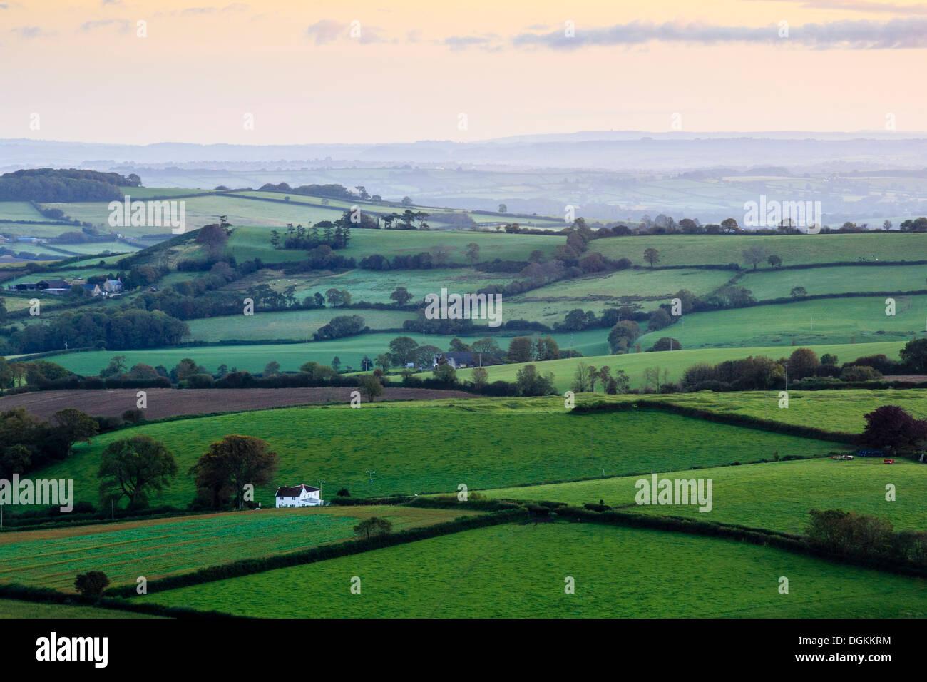 La mattina presto viste attraverso il West Dorset da Pilson Pen hill fort che è il punto più alto nel Dorset. Immagini Stock
