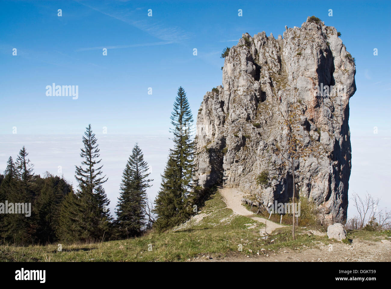 Roccia calcarea sul sentiero panoramico a monte Kampenwand, Alta Baviera, Baviera Immagini Stock