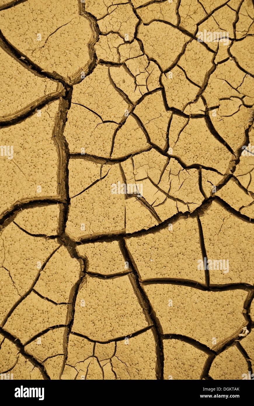 Secco, incrinato fango, immagine simbolica per il cambiamento climatico Immagini Stock