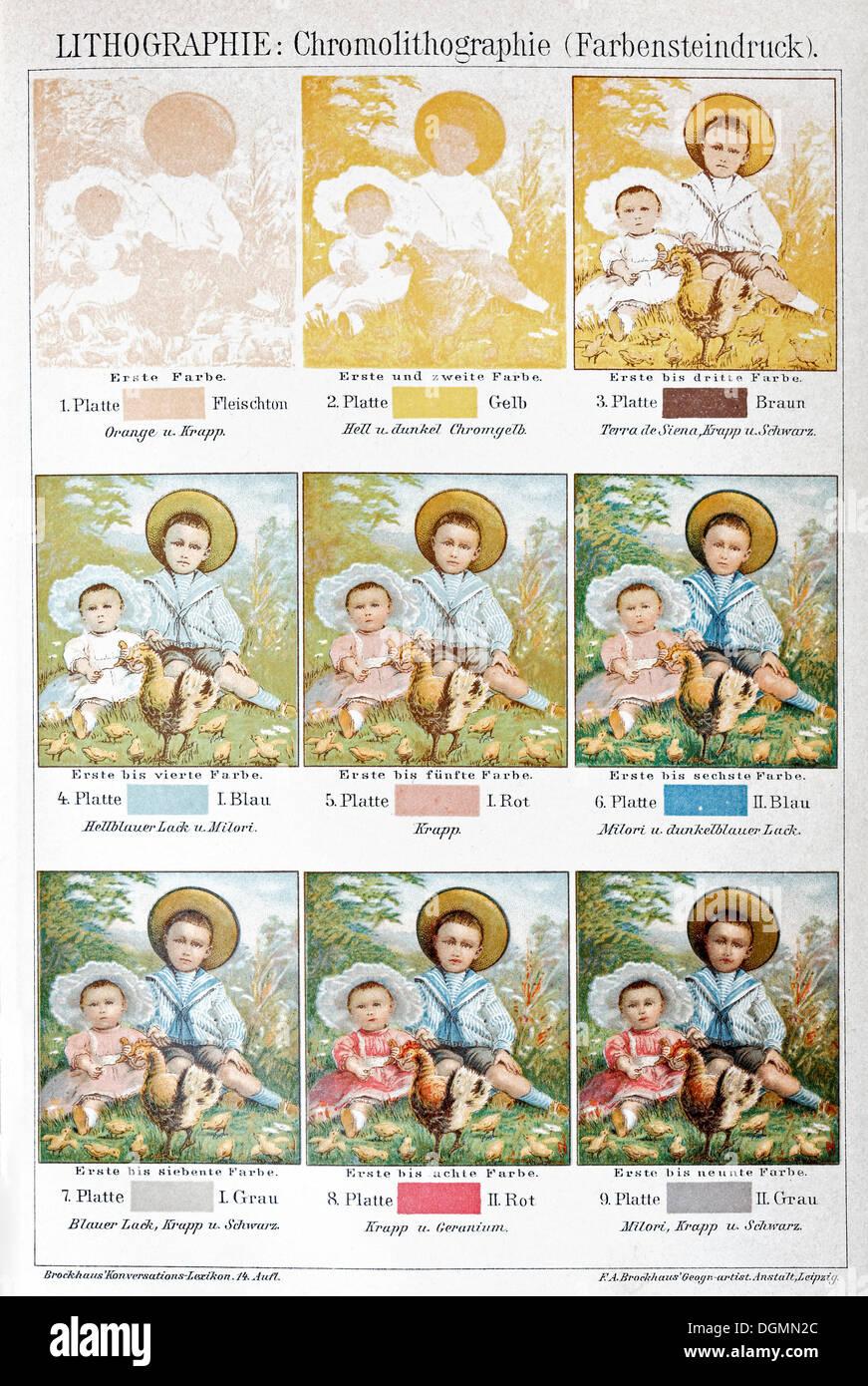 Chromolithography, secolo XIX, Litografia a colori o la stampa di pietra, piastra di colore con inchiostri individuali Immagini Stock