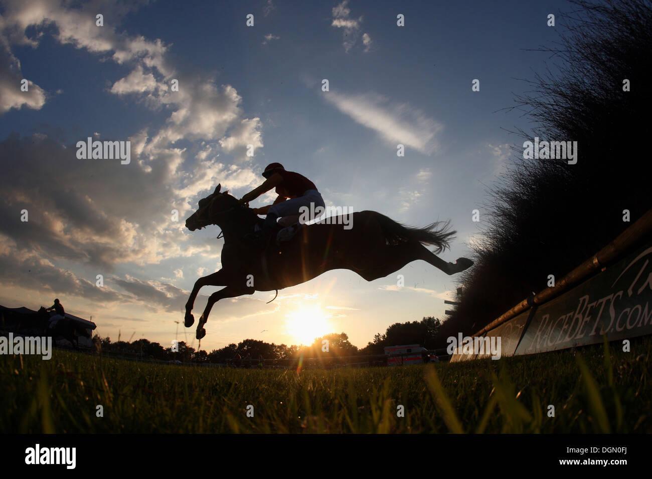 Hannover, Germania, silhouette, cavallo e fantino saltando un ostacolo Immagini Stock