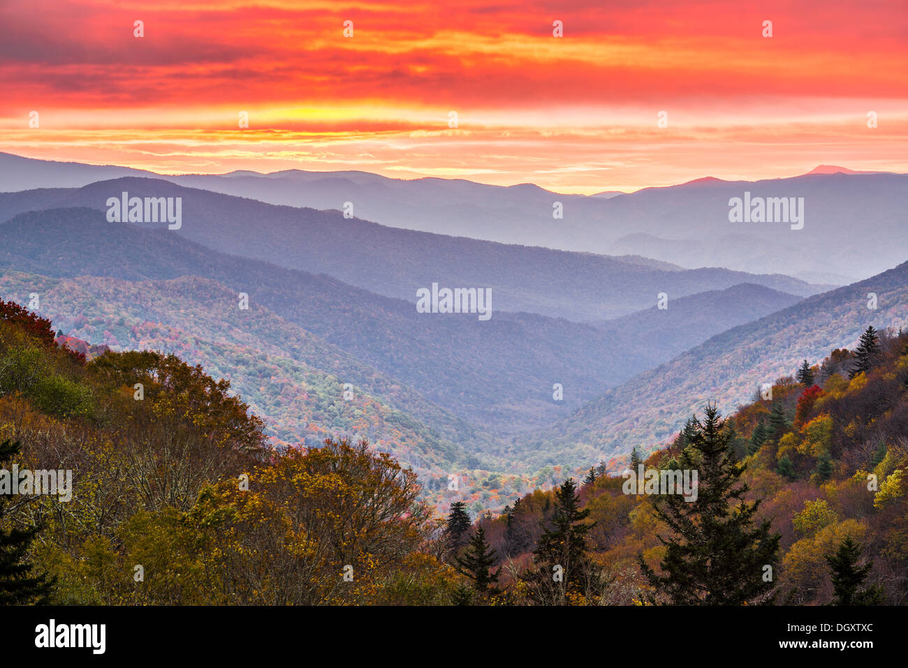 Autunno sunrise nelle Smoky Mountains National Park. Immagini Stock