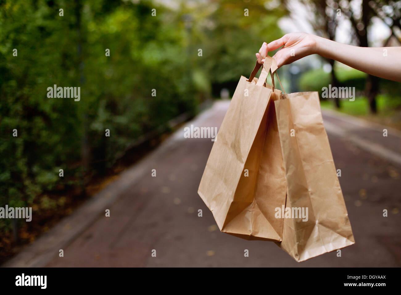 Le borse della spesa in mano Immagini Stock
