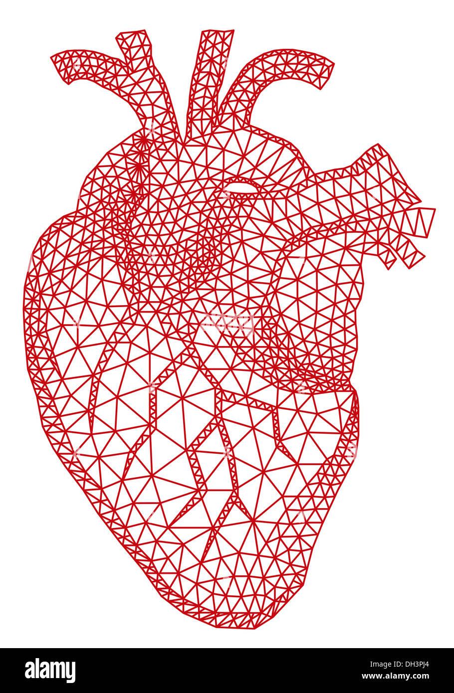 Abstract rosso cuore umano con geometrica maglia Immagini Stock