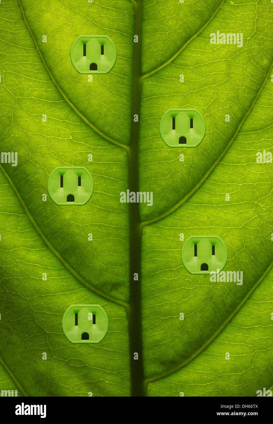 Close-up di una pianta verde foglia con cinque colorate di verde prese elettriche aggiunto. Immagini Stock