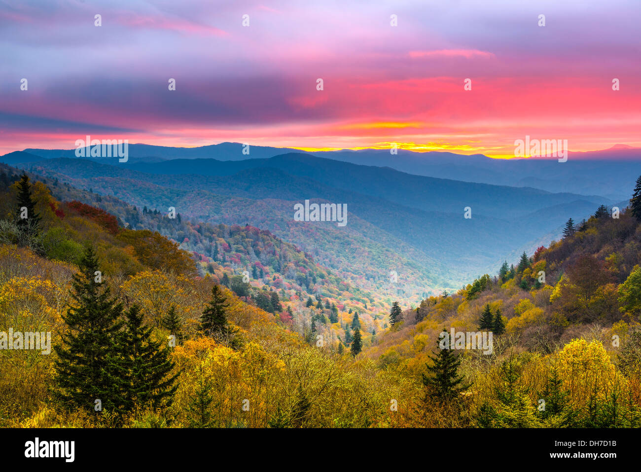 Autunno in mattinata il Smoky Mountains National Park. Immagini Stock