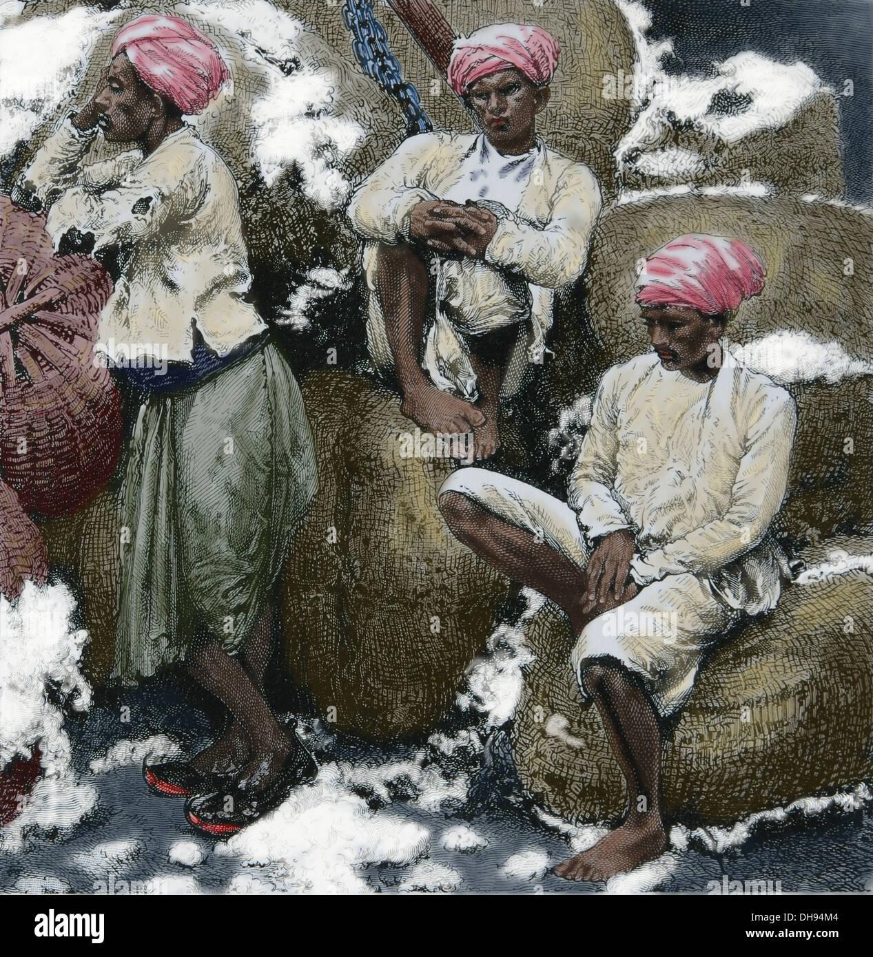 Asia. India. Vettori di cotone. 1870. Incisione colorata. Immagini Stock