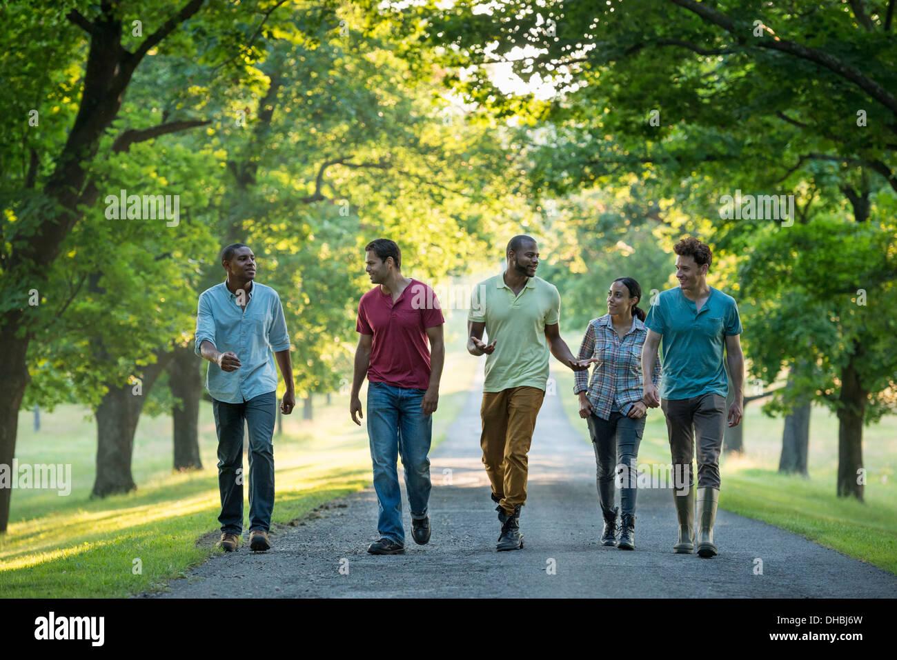 Cinque persone che camminano giù un viale alberato in campagna. Immagini Stock