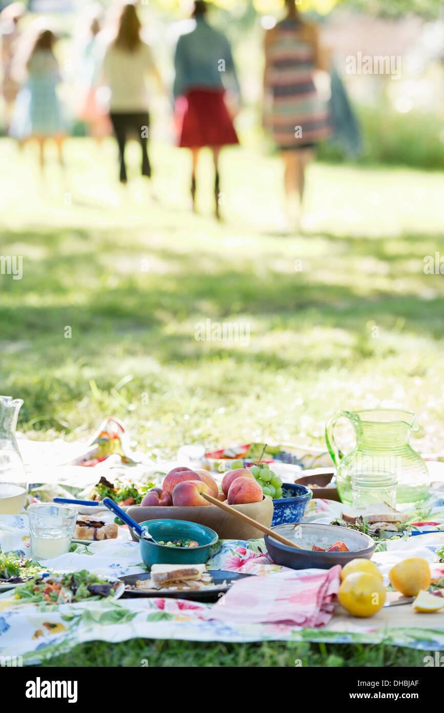 Un gruppo di adulti e bambini seduti sul prato sotto l'ombra di un albero. Una festa di famiglia. Immagini Stock