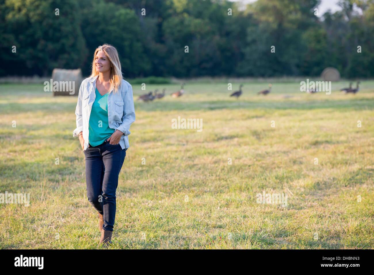 Una donna di camminare su un campo, lontano da un branco di oche all'aperto all'aria fresca. Foto Stock