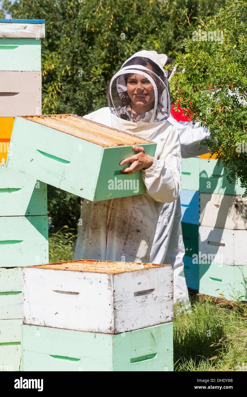 Ritratto di apicoltore funzionante a Apiario Foto Stock