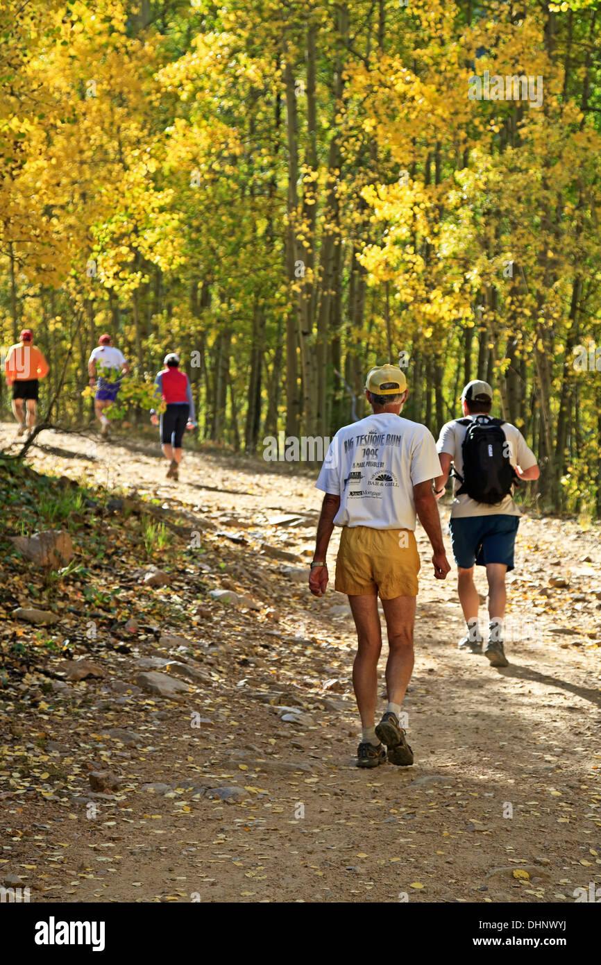 Gara walkers sul sentiero fiancheggiato da aspens in colori autunnali, Aspen Vista Trail, Santa Fe, New Mexico USA Immagini Stock