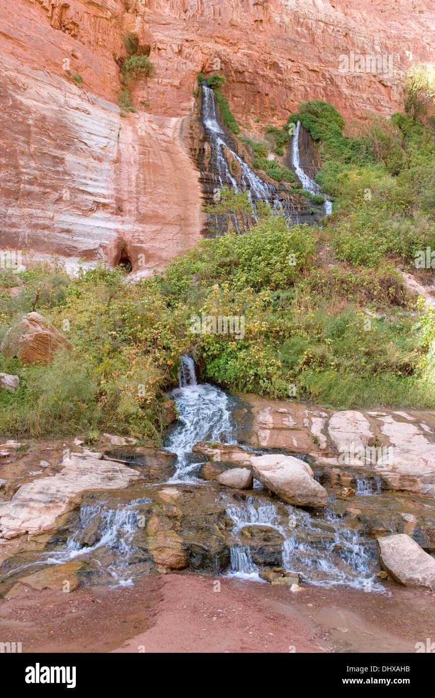 Vasey's Paradise molle e cascate nel Redwall sezione del Grand Canyon, Arizona, Stati Uniti d'America Immagini Stock