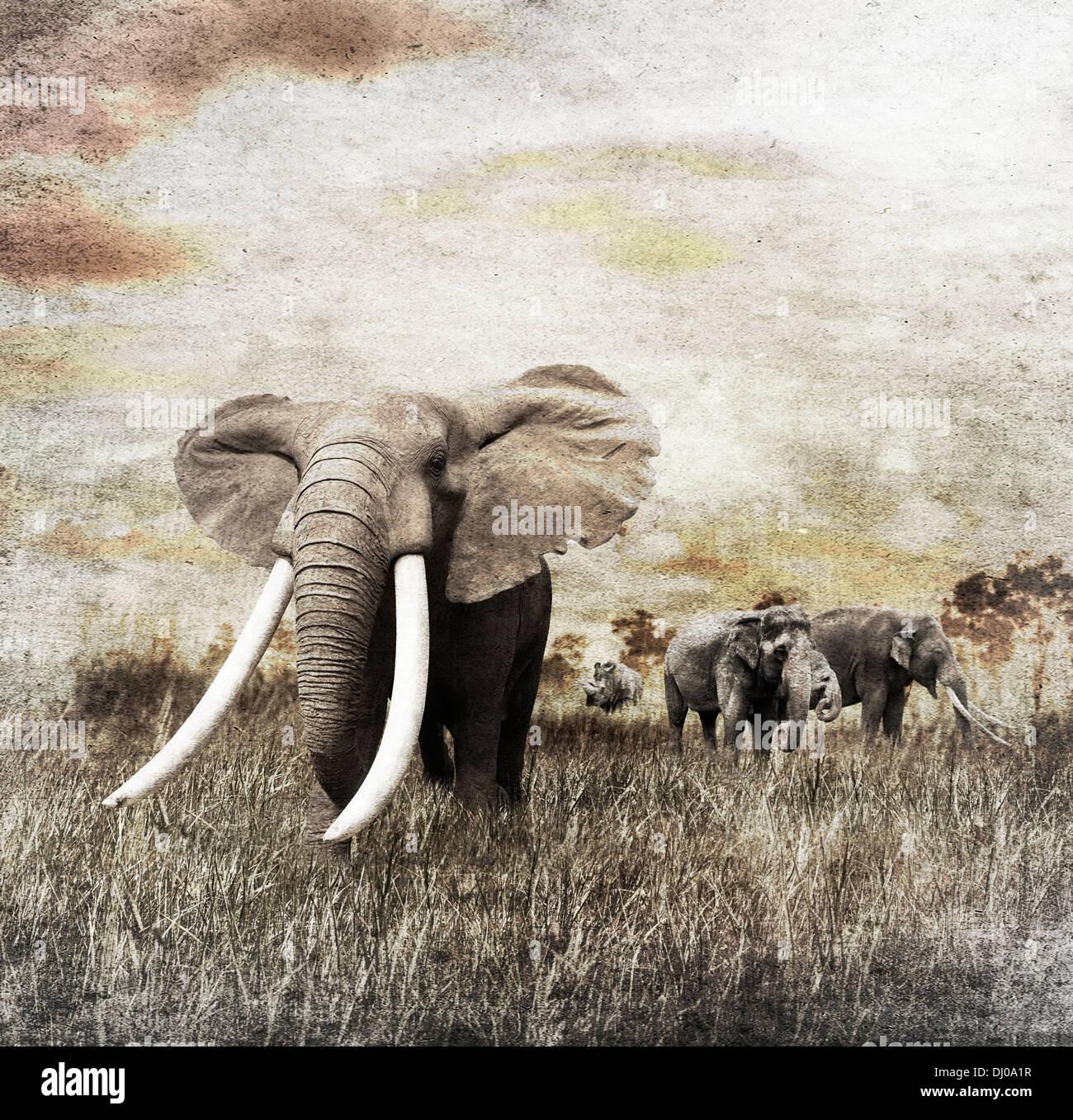Immagine di grunge di Elefanti a piedi Immagini Stock