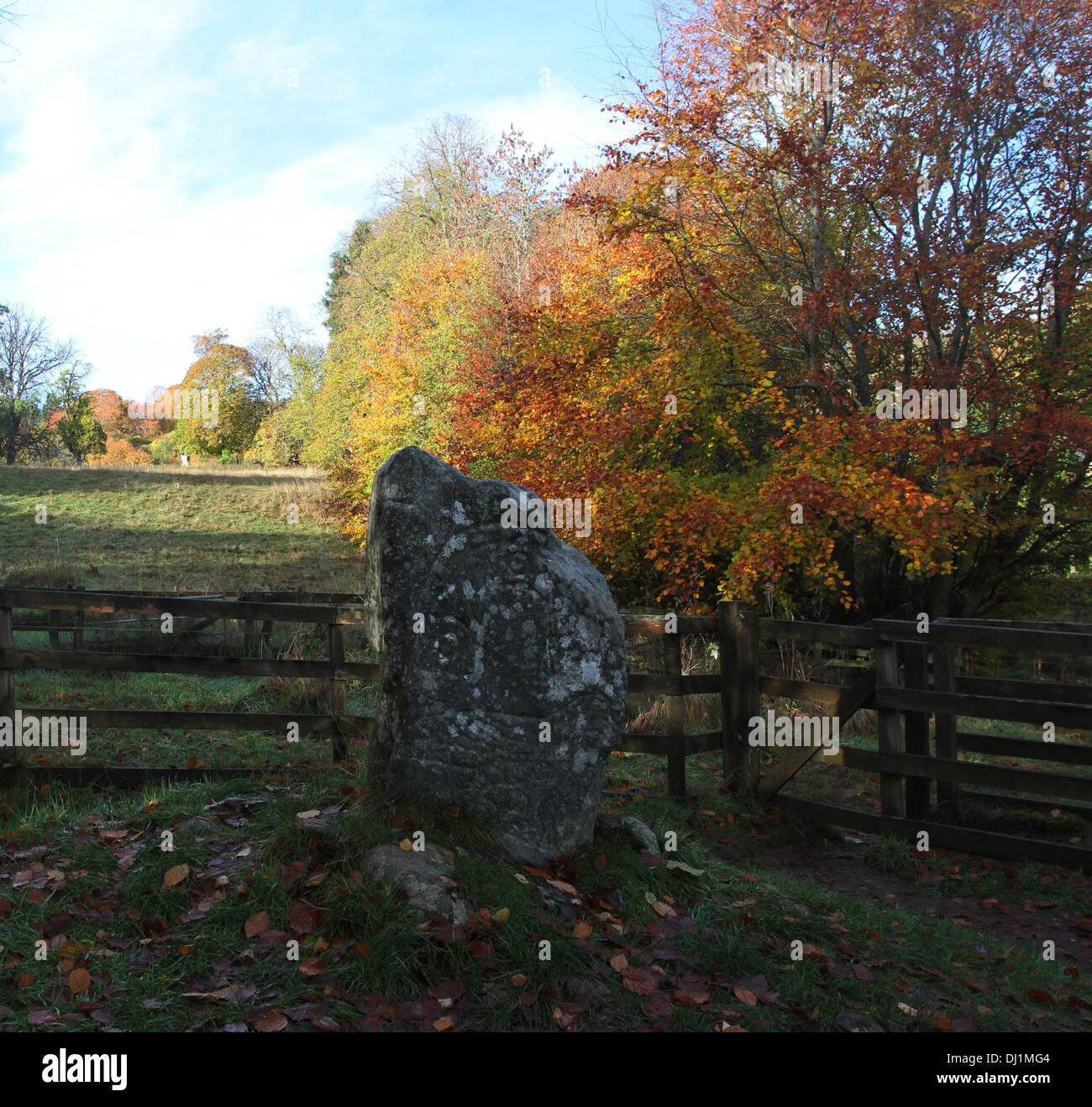La pietra di eagle strathpeffer scozia novembre 2013 Foto Stock