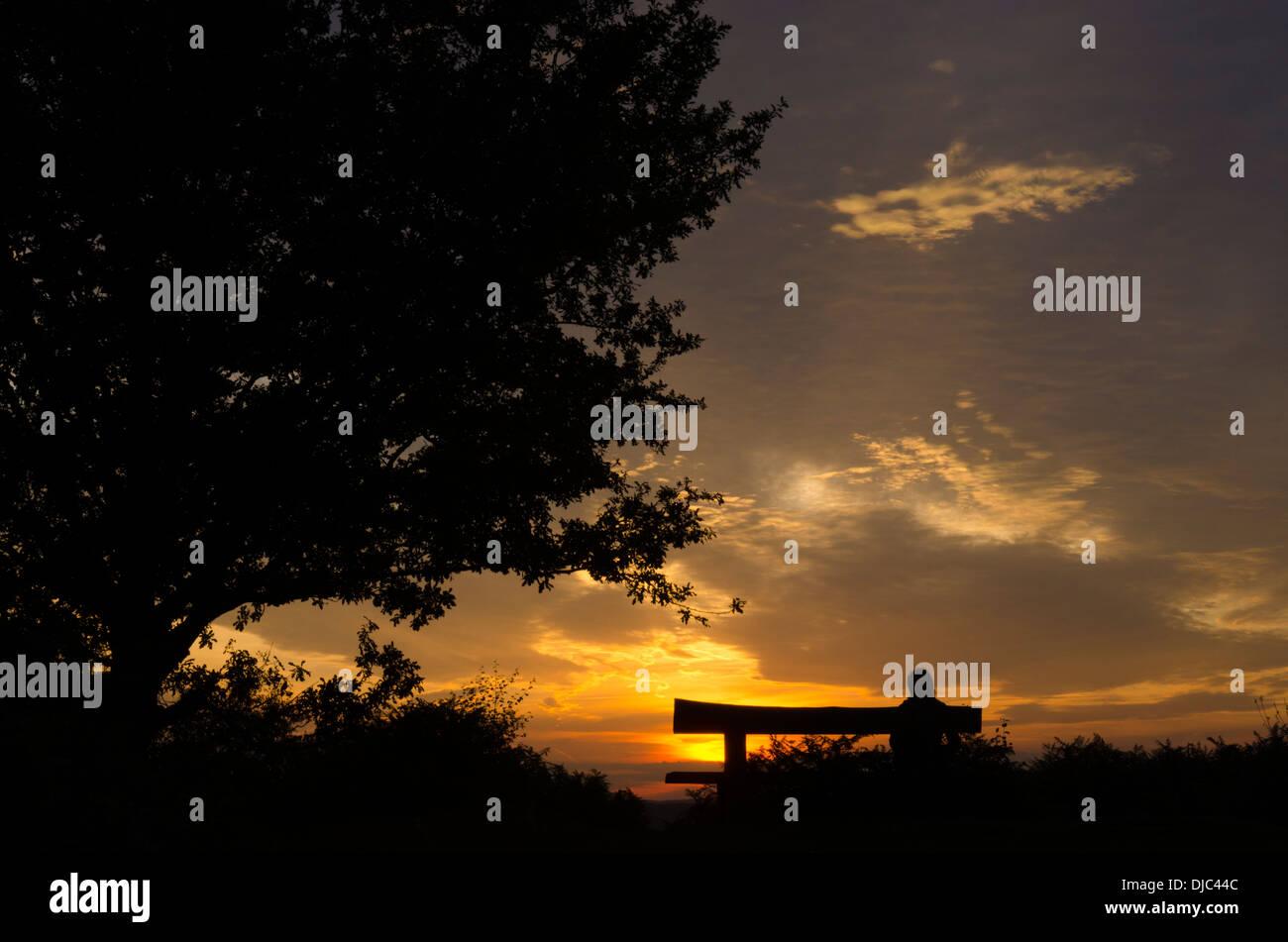 Donna sul banco di prova a guardare il tramonto da vecchie colle sul Woolbeding comune, West Sussex, Regno Unito. Settembre. Immagini Stock