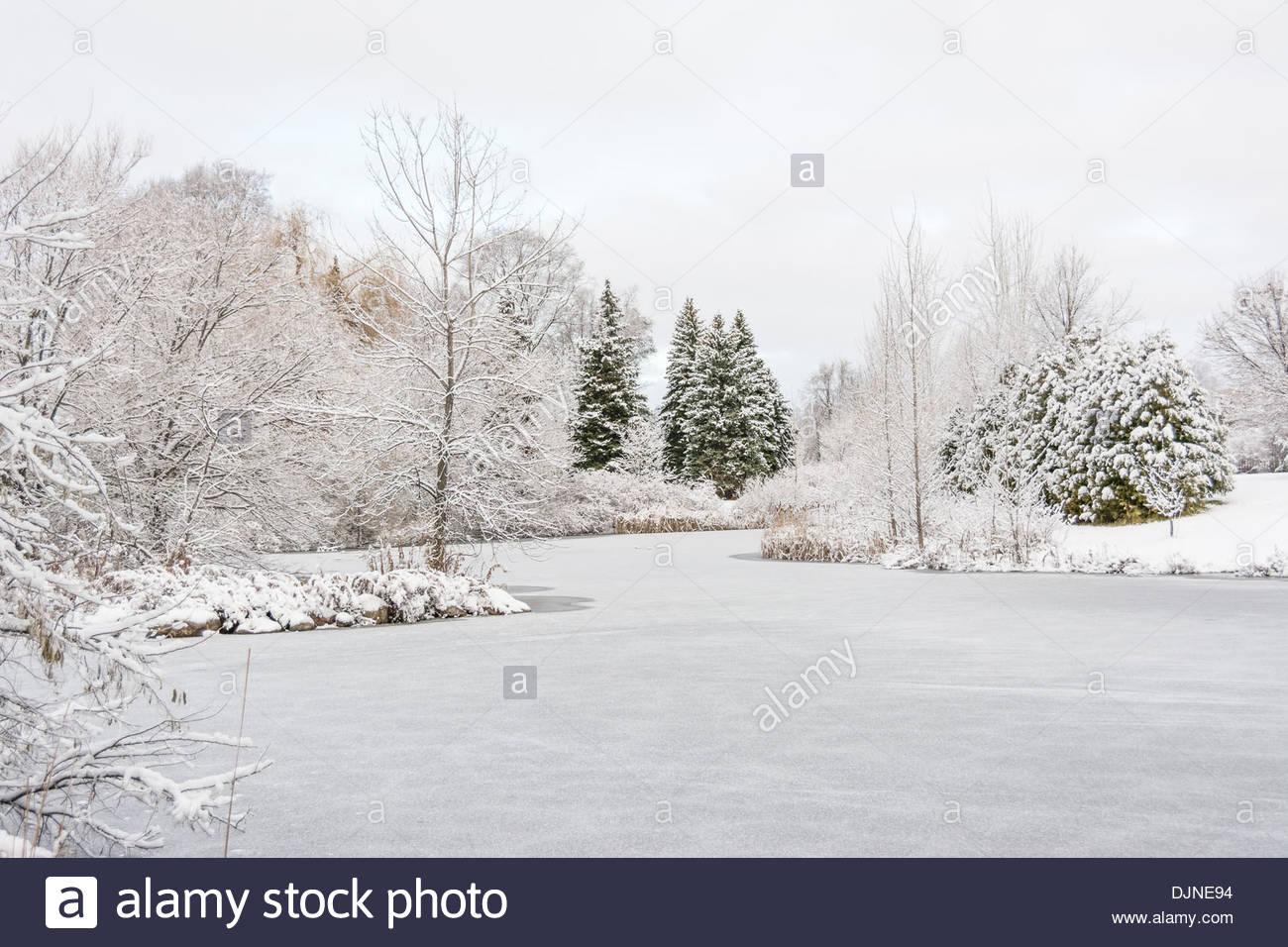 Foto Di Natale Neve Inverno 94.Meta Lago Ghiacciato O Stagno Dopo Una Tempesta Di Neve Nel Nord