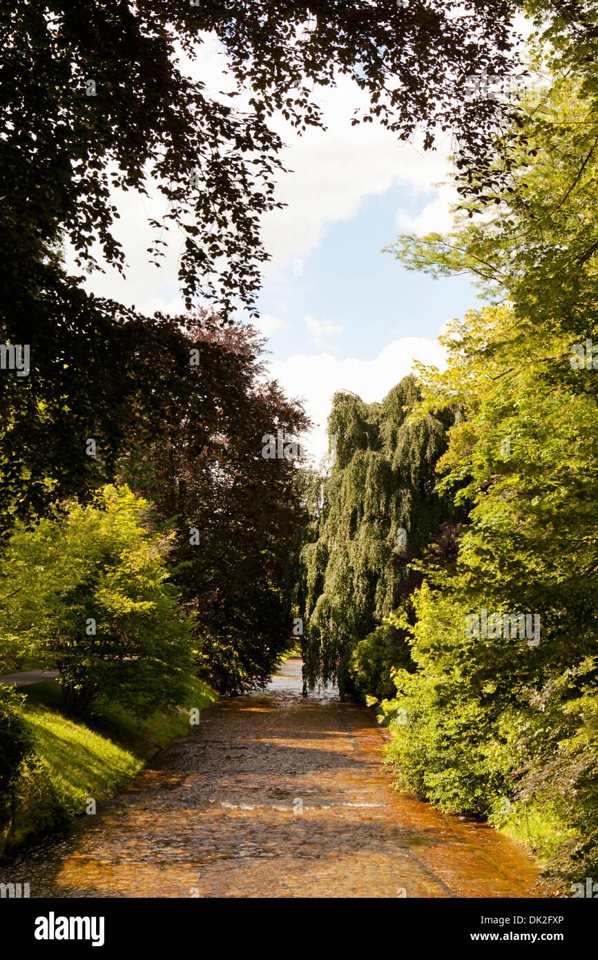 Alberi e cespugli che crescono lungo soleggiato percorso bagnato in Lichtentaler Allee che conduce al fiume Oos, Immagini Stock