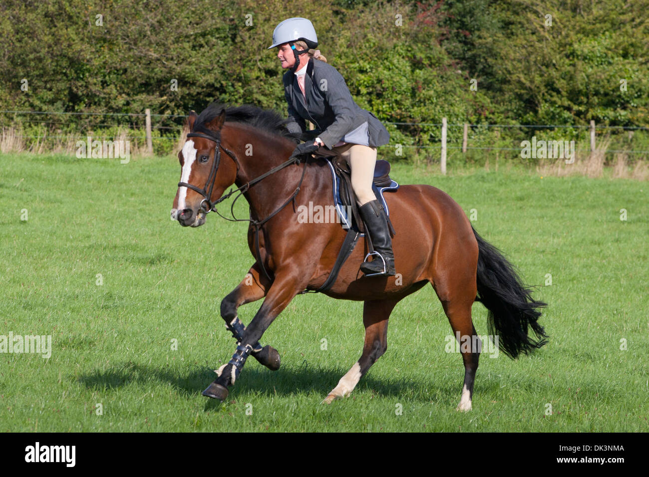 Horse Jumping eventing cross country sport equino jump visualizza fattoria rurale box grigio gymkhana Godshill Isle of Wight England Regno Unito Immagini Stock