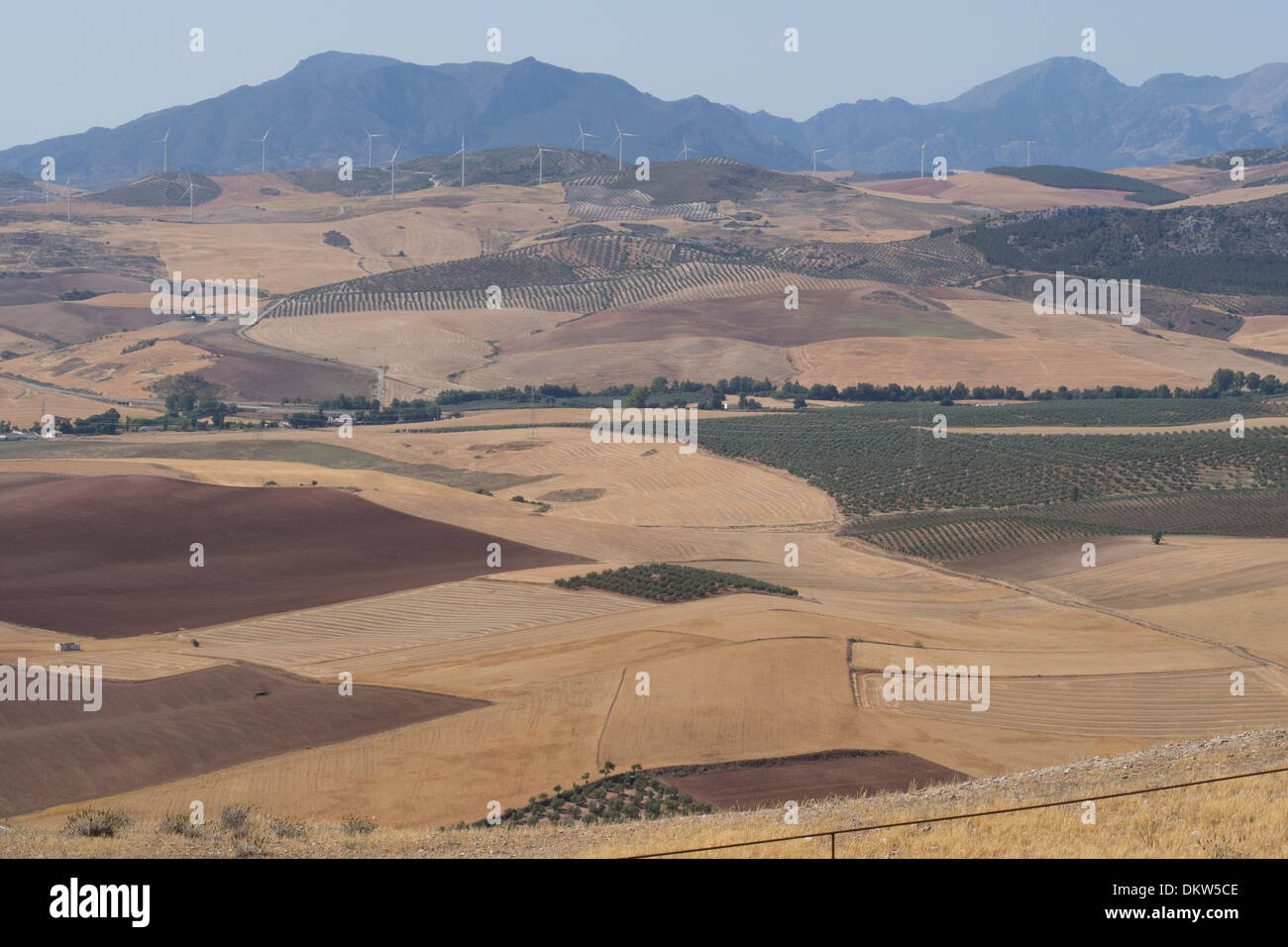 Vista da Teba, sulla campagna circostante, Andalusia, Spagna Immagini Stock