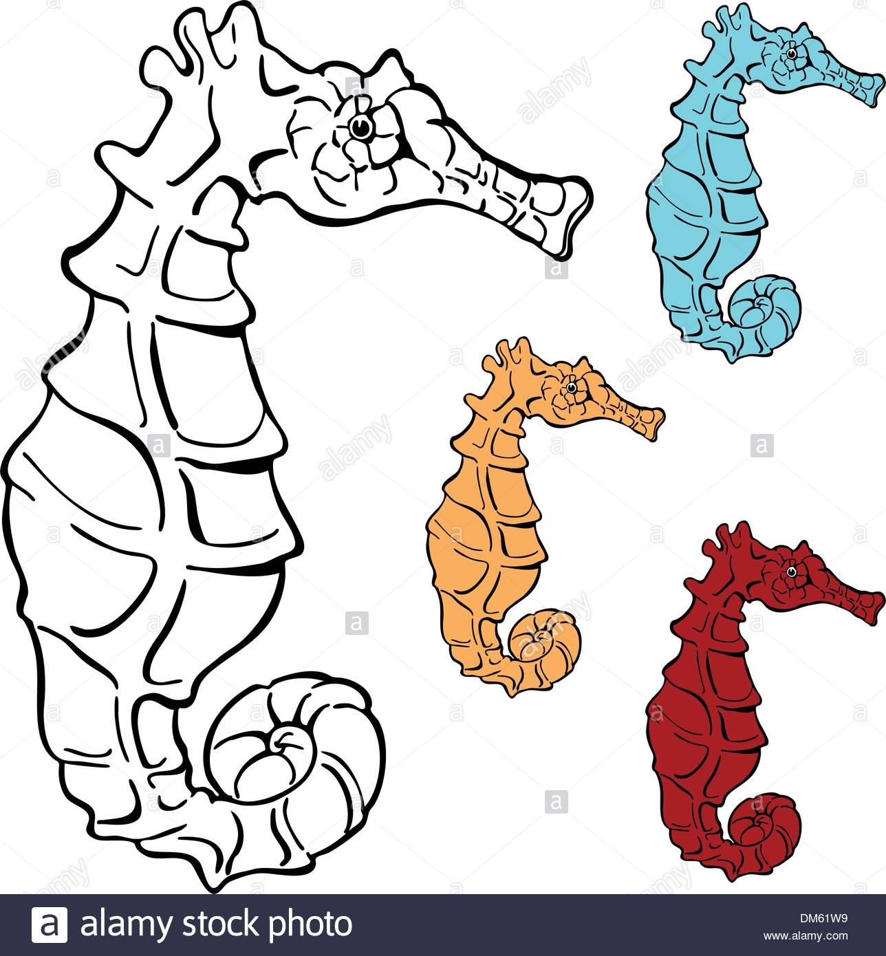 Disegno Di Cavalluccio Marino Illustrazione Vettoriale 64057429 Alamy