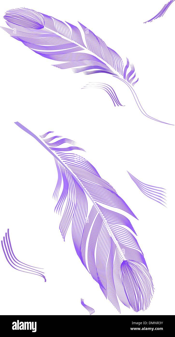 Disegno di piume di uccello Illustrazione Vettoriale