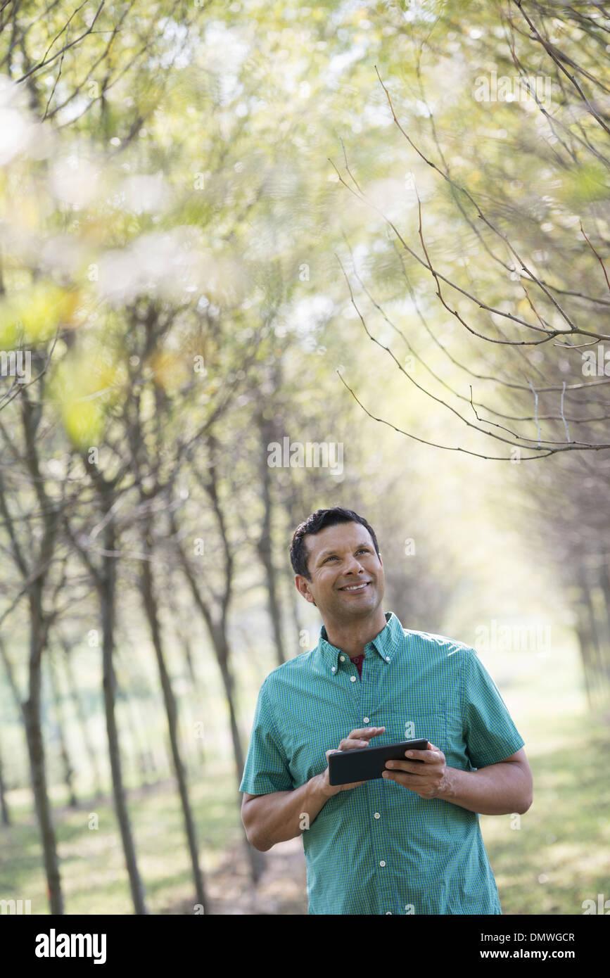 Un uomo in un viale di alberi in possesso di una tavoletta digitale. Immagini Stock