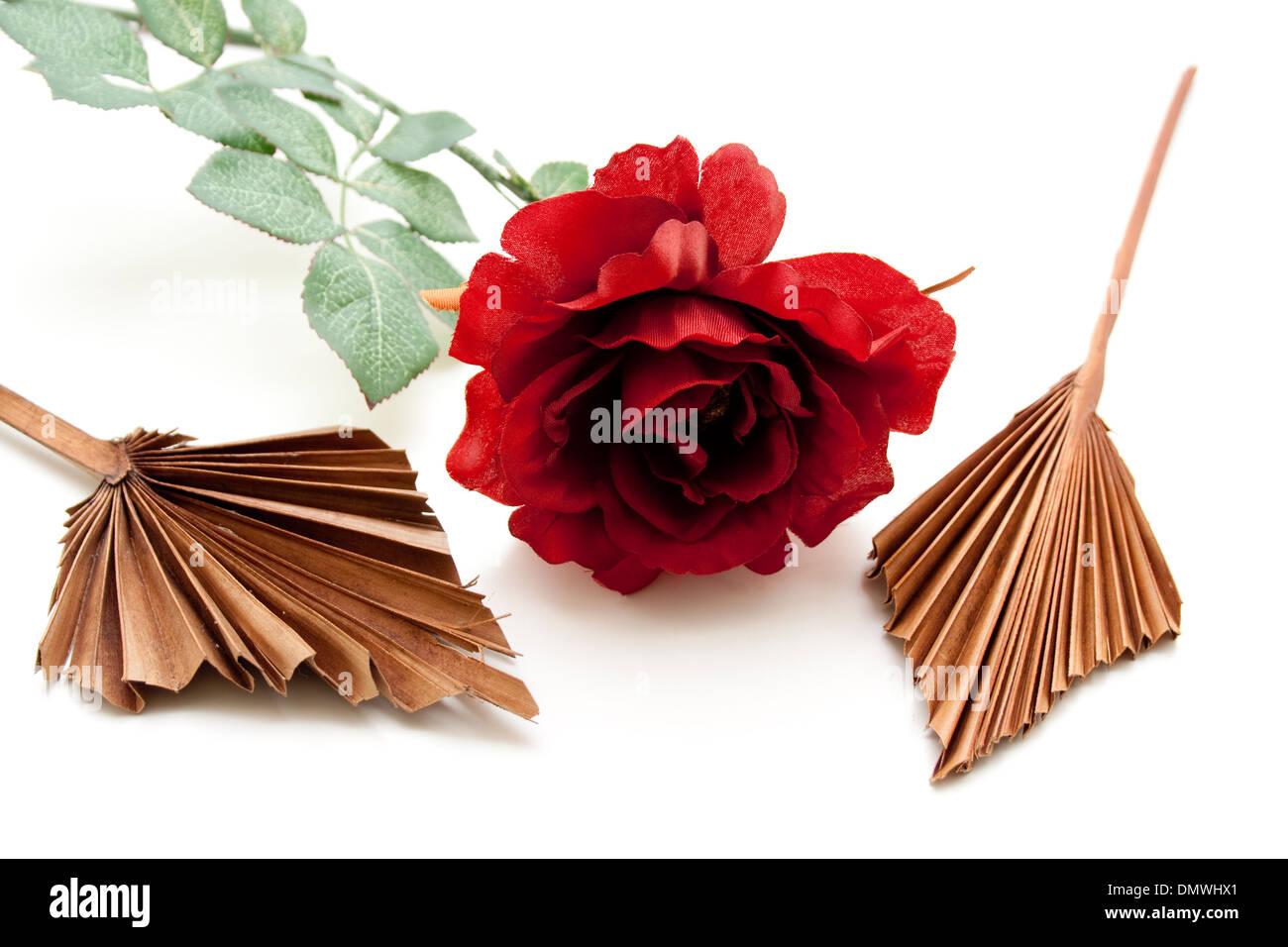 Red Rose con foglio di legno Immagini Stock