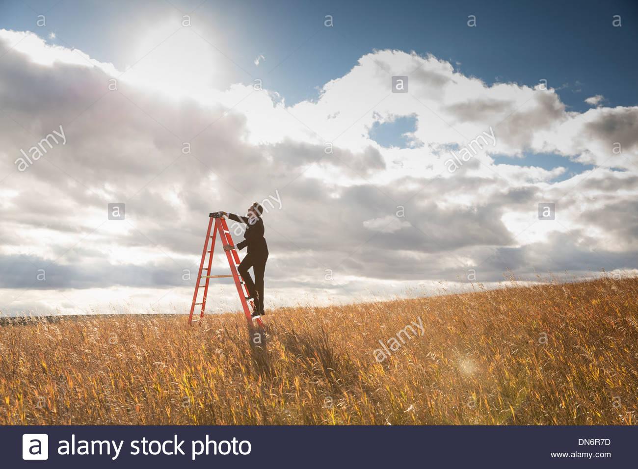 Imprenditore arrampicata scaletta nel campo Immagini Stock