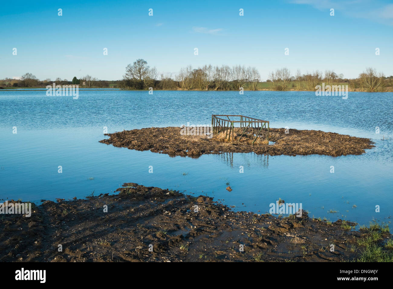 Campo allagato Oxfordshire England Regno Unito Foto Stock