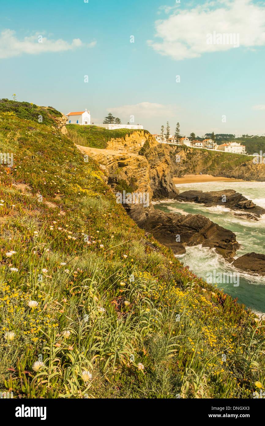 Vista di zambujeira do Mar, in primo piano la vegetazione tipica della zona costiera del parco naturale _ Parque natural fare sudoe Immagini Stock