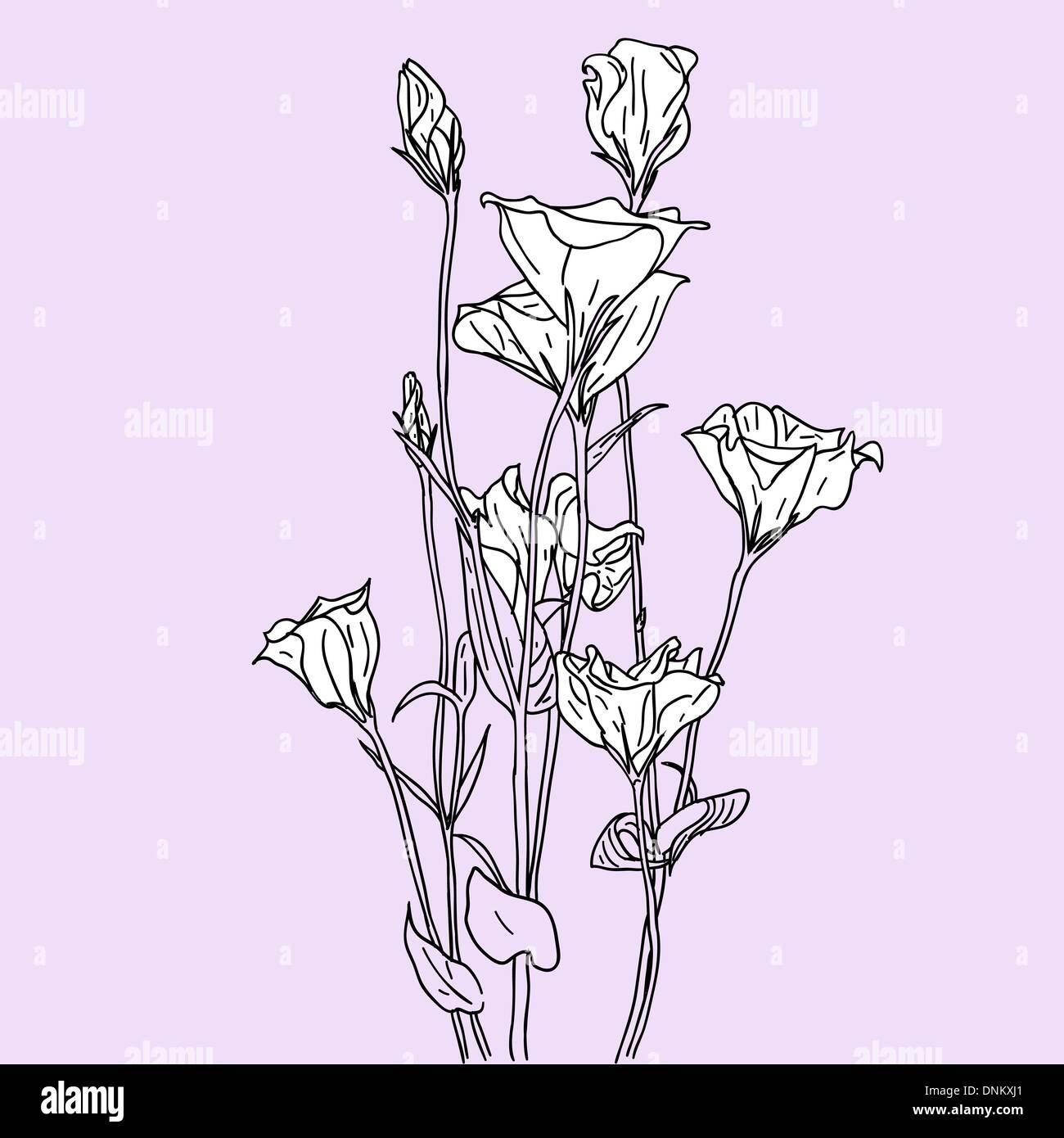 Vettore sfondo floreale Immagini Stock
