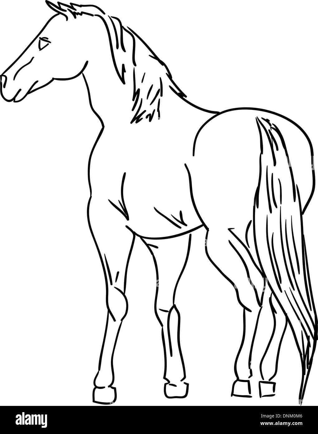 Versione del vettore. Cavallo nero silhouette isolato su bianco per il design. Immagini Stock