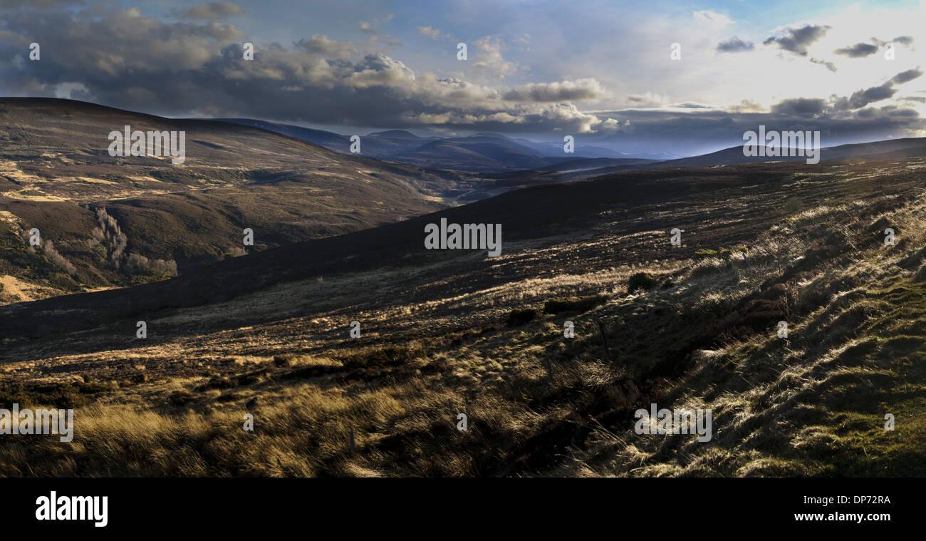 Vista della brughiera habitat quasi completamente priva di neve durante unseasonably calda primavera del 2011 Cairngorms N.P. Aberdeenshire Immagini Stock