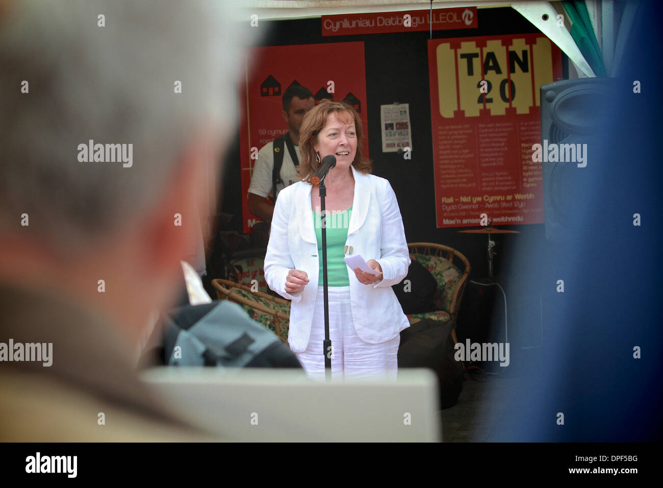 Jill Evans MEP, Plaid Cymru membro del Parlamento europeo per il Galles. Sedia di CND Cymru ex presidente di Plaid Cymru. Immagini Stock