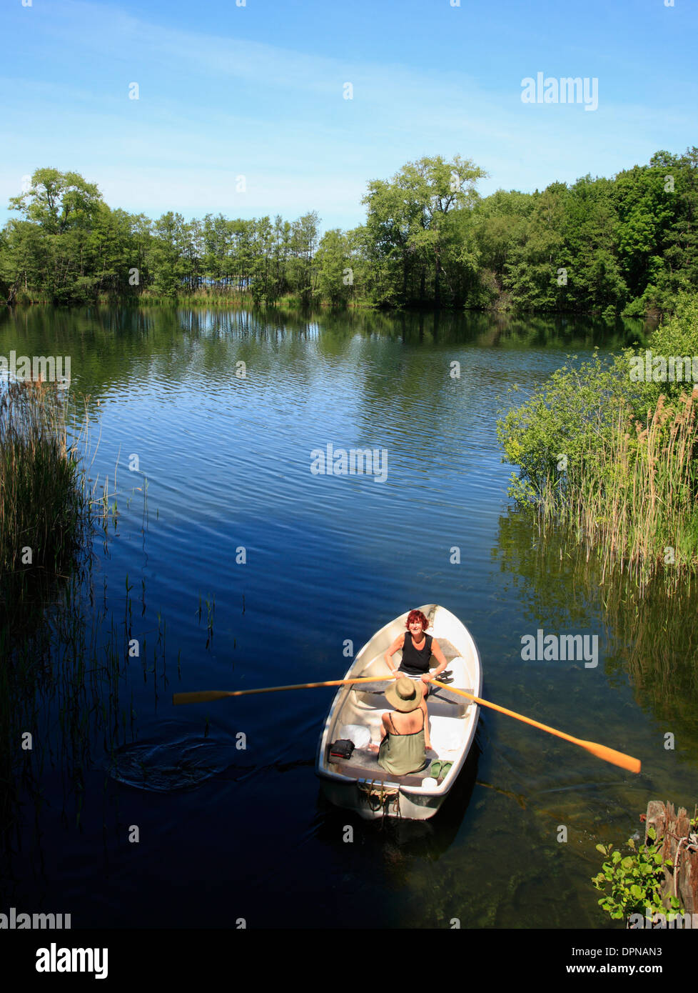 Lago Schaalsee, vogatore vicino Lassahn, Meclemburgo-Pomerania, Germania, Europa Immagini Stock