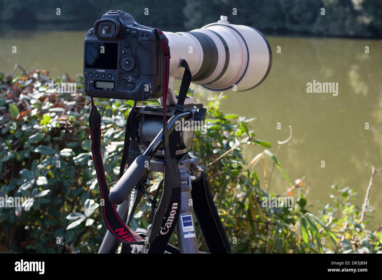 Bird / Wildlife Photographer di apparecchiature. Robusto treppiede Gitzo, reflex digitali Canon con teleobiettivo. Immagini Stock